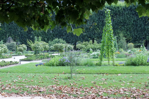 Jardin des Plantes - The Wishing Tree Blog